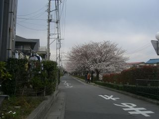画像 005_320.jpg